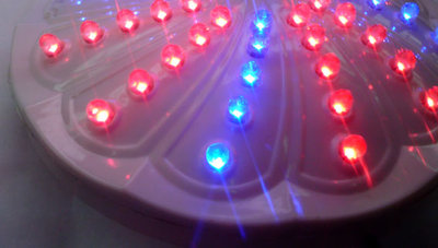 led-grow-light1.jpg