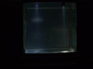 0006 10 градусов в воде.JPG