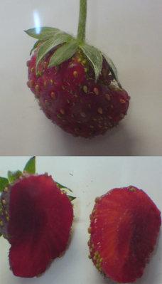 led-stawberry-1.jpg