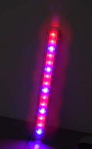 led-grow-1111.jpg