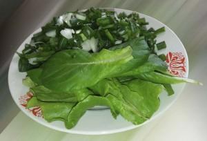 салат на тарелке.jpg