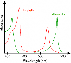 Chlorophyll_ab_spectra.png