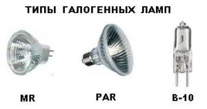 Types of halogen.JPG